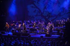 Live Review: Nick Cave and the Bad Seeds with the Sydney Symphony Orchestra - Sydney Opera House (26.02.13) | the AU review