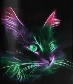 """Feline Fine Art """"The Cat's Whiskers"""" Warrior Cats, Crazy Cat Lady, Crazy Cats, Image Chat, Gatos Cats, Cross Paintings, Cat Paintings, Cat Drawing, Fractal Art"""