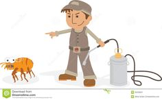 Find Fumigation Services In London Which Kill Bed Bugs And Cockroaches - Get Professional and Effective Pest Control In London - call 020 3404 4103   www.bedbugbuggers.co.uk for a great quote 24/7
