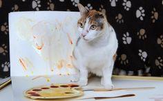 Conozca a la gata pintora de una sola oreja. Visite nuestra página y sea parte de nuestra conversación: http://www.namnewsnetwork.org/v3/spanish/index.php #nnn #bbernama #malaysia #malasia #london #eyecandy, #cny #turismo #esdemejoresamigos  #tucaramesuena #idol #vinadelmar2015 #cat #pussy #kitten #art #vangogh #ear #painting #uk #gato #pintura #cultura #arte #curioso