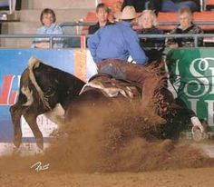 Things I want to do... Working cow horse