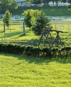 A secret garden with a snap pea trellis fort for little ones!