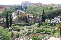 If you are looking for a special place you have to go to the 'Orto of Santa Croce in Gerusalemme' (Vegetables garden of Basilica of Santa Croce), you can buy directly from the Friars. The vegetable shop is in Piazza Santa Croce in Gerusalemme. http://www.basilicasantacroce.com - See more at: http://www.sleepingrome.com/blog/category/food/#sthash.SFC66t1h.dpuf