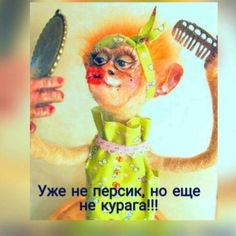 (47) Одноклассники Russian Humor, Monkey Art, Funny Expressions, Great Philosophers, Funny Phrases, Clever Quotes, Meaningful Words, In My Feelings, Funny Moments