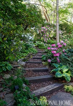 A garden path is surrounded by rhododendrons. - Photo: Rob Cardillo