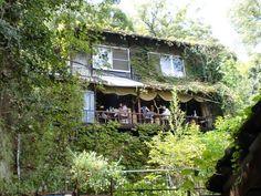 蔦が家を囲っていて、「本当にここがカフェ?」と思えるような外観ですが、正真正銘の古民家カフェです!大正時代に建てられたという古民家からは、尾道水道や尾道大橋も眺めることができます。マイナスイオンがたくさんでていそうです。