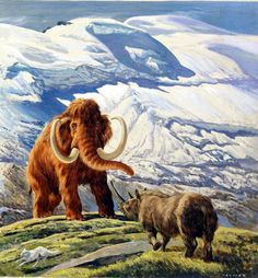 Woolly Mammoth and Woolly Rhinoceros (Original) (Signed) art by Eric Tansley at The Illustration Art Gallery - Pleistocene