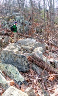 Boulders on the trail at Old Rag Mt in Virginia