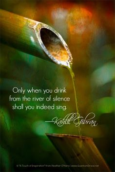 """""""Only when you drink from the river of silence shall you indeed sing."""" —Kahlil Gibran www.QuantumGrace.net/QUOTE_GALLERY.html ..*"""