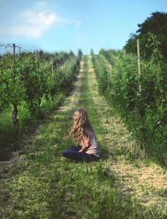 Entre las viñas... robando uvas