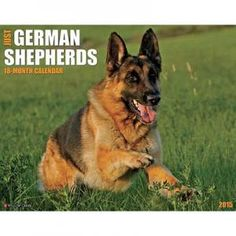 Just German Shepherds 2015 Calendar $11.99