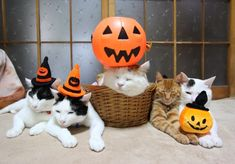 Halloween together! SHIRO and his brothers!! <3
