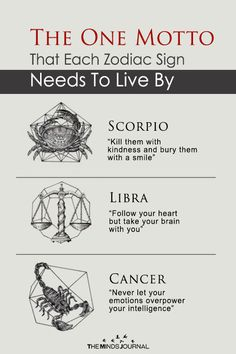 Each Zodiac sign has one motto that they should stick to as they navigate through life. The One Motto That Each Zodiac Sign Needs To Live By Zodiac Signs Meaning, Scorpio Zodiac Facts, Sign Meaning, 12 Zodiac Signs, Zodiac Sign Facts, Horoscope Signs, Astrology Zodiac, Zodiac Quotes, Astrology Signs