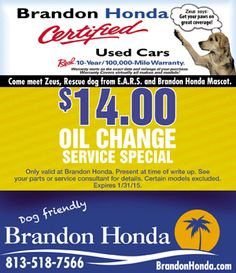 ZEUS SAYS: GET YOUR PAWS ON GREAT COVERAGE #honda #brandonhonda #dogfriendly #usedcars #florida