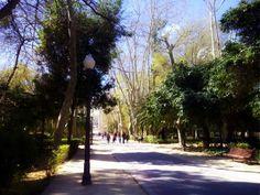 Parque Ribalta, el parque más emblemático de Castellón Sidewalk, Community, Parks, Places, Side Walkway, Walkway, Walkways, Pavement