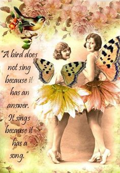 a bird does not sing because it has an answer..