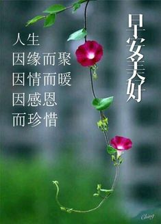 Selamat 早安 Gd Morning Quotes, Morning Greetings Quotes, Good Morning Messages, Good Morning Wishes, Good Morning Picture, Morning Pictures, Wisdom Quotes, Love Quotes, Happy New Year Sms