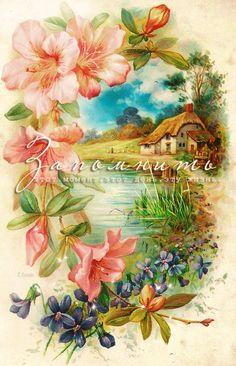 Vintage postcard, cottage, pink and blue flowers Vintage Greeting Cards, Vintage Ephemera, Vintage Paper, Vintage Postcards, Post Cards Vintage, Art Floral, Vintage Pictures, Vintage Images, Graffiti Kunst