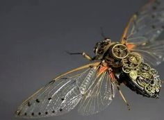 Intricate Steampunk Insects : Bio Bugs: on We Heart It Within The Wires, Henry Cheng, Adam Parrish, Blue Sargent, The Golden Compass, Raven King, Maggie Stiefvater, Bug Art, The Adventure Zone