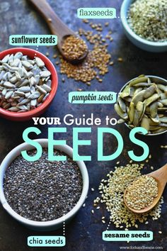 Guide to Seeds / Fork and Bean Includes nut-free trail mix recipe Nut Free Trail Mix Recipe, Trail Mix Recipes, Healthy Life, Healthy Snacks, Healthy Eating, Healthy Seeds, Healthy Protein, Whole Food Recipes, Vegan Recipes