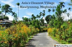 Mawlynnong Village in Cherrapunji is popularly called 'God's Own Garden.' It has won international accolades for being Asia's Cleanest Village. It is a community based effort for promoting eco-tourism.