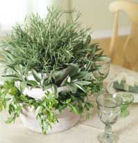 Herb Centerpiece - and the aroma would be divine!