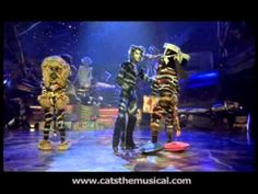 The Battle of the Pekes and the Pollicles - part one. HD, from Cats the Musical - the film. Cats The Musical Costume, Cats Musical, Michael Gruber, Cats That Dont Shed, Cats Cast, Jellicle Cats, Cat Movie, Broadway Theatre, Greatest Songs