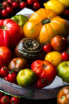 Alte Paradeiser Sorten bzw Tomaten Sorten / Heirloom Tomatoes photo sandratauscher.com