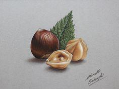Hazelnuts by marcellobarenghi.deviantart.com on @deviantART