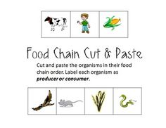 Food Chain Cut and Paste (Producers/Consumers) More