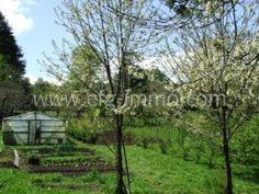 Chile Pucon Estancia 21 Hektar zu verkaufen