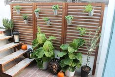 Vertical Patio Garden: If you're trying to figure out how to cover up an ugly wall or just don't have the space for a mini garden, it's time to think vertical. With wooden panels from IKEA and some hanging pots, you can start growing your garden ASAP.