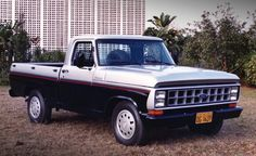 1987 Ford F-1000 Truck Maintenance/restoration of old/vintage vehicles: the material for new cogs/casters/gears/pads could be cast polyamide which I (Cast polyamide) can produce. My contact: tatjana.alic@windowslive.com