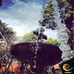 El agua es el vehículo de la naturaleza. #tiempo #tlaxcala #ucoatl #naturaleza #belleza #vive_mexico #cultura #creatividad #arte #ucoatl