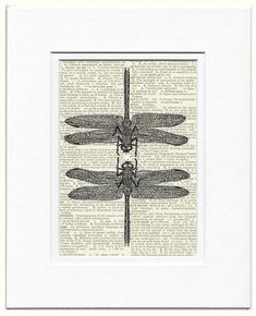 dragonflies vintage dragon fly artwork printed on by FauxKiss