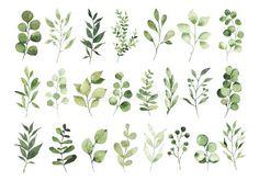 Watercolor Plants, Watercolor Leaves, Watercolor Background, Floral Watercolor, Watercolour Painting, Greenery Background, Leaf Background, Watercolor Beginner, Space Drawings