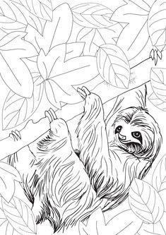 Amazon.fr - Petites bêtes et grosses bestioles: Mon premier art-thérapie - 100 coloriages créatifs - Marthe MULKEY - Livres
