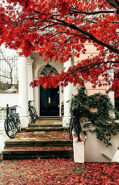 Notting Hill, London, England, UK by elensham Notting Hill London, London City, London Street, Autumn Photography, Red Aesthetic, London Travel, Belle Photo, Aesthetic Wallpapers, Beautiful Places