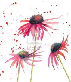 ... simple watercolor flowers for DIY cards.