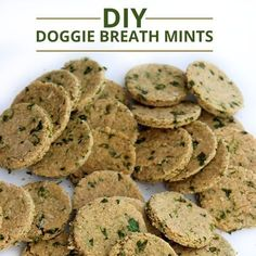 Does your dog have stinky breath? Try making these Doggie Breath Mints! #diy #dogrecipes
