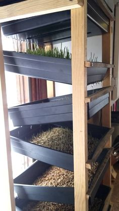 This is the system we have for growing fodder for our chickens. It saves us hundreds! Food For Chickens, Raising Chickens, Chickens Backyard, Hydroponic Farming, Hydroponics, Sustainable Farming, Urban Farming, Balcon Condo, Grow Room Design