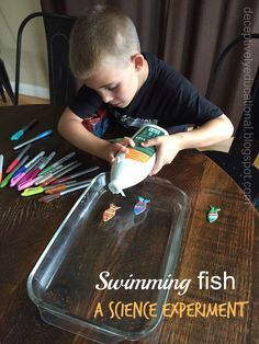 Relentlessly Fun, Deceptively Educational: Swimming Fish (A Science Experiment)