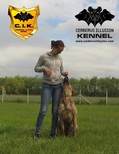 How to train your dog to heel - Cerberus Illusion - Cimarron Uruguayo Pet Dogs, Pets, Cerberus, Training Your Puppy, Hunting Dogs, How To Train Your, Service Dogs, Working Dogs, Dog Walking