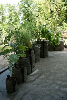 Des sacs pour planter sur un balcon ou une terrasse -By Paris Coté Jardin