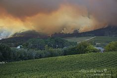 Cape Town Fire ‹ Ark Images, Powered By Shawn Benjamin Photography Cape Town, Ark, Vineyard, Mountains, Nature, Photography, Travel, Outdoor, Image