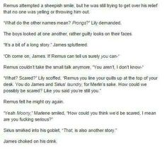 Oh the marauders... If only Jo would write a prequel