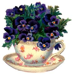 Vintage Graphic - Beautiful Teacup with Pansies - The Graphics Fairy