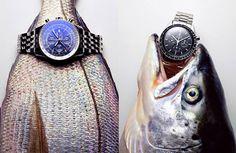 Митчелл Фейнберг реклама часов: 7 тыс изображений найдено в Яндекс.Картинках