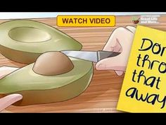 Stop Throwing Away Avocado Seeds They're Potent Cancer Fighters!