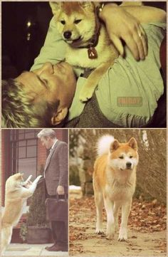 Hachiko♡ a tale of loyalty and love...I cry every time I read about this dog!